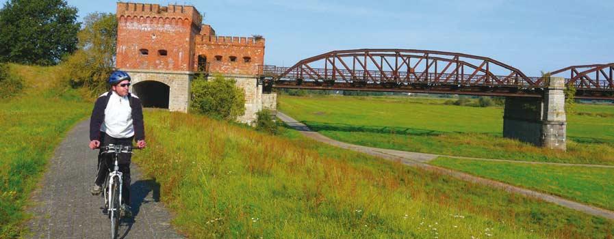 Radfahren an der Elbe Elbtalaue