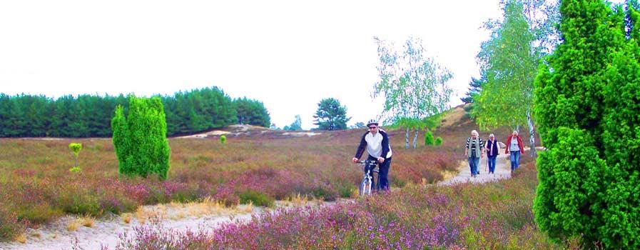 Radfahren in der Lüneburger Heide