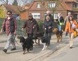 Hundeführerschein für Niedersachsen - Training